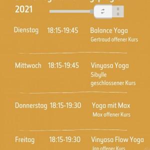 Unser online Yogaprogramm in der Übersicht